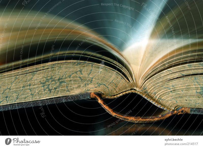 Vorspulen ... alt Bewegung Freizeit & Hobby Buch liegen Geschwindigkeit Papier Bildung Vergänglichkeit dick Langzeitbelichtung Buchseite Printmedien Medien Wende Bewegungsunschärfe