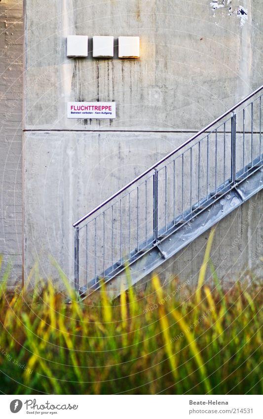 Verbotener Fluchtweg Wand Gras Mauer Gebäude Metall Beton Schilder & Markierungen Fassade Sicherheit Treppe trist Baustelle Schutz Gelassenheit Hinweisschild