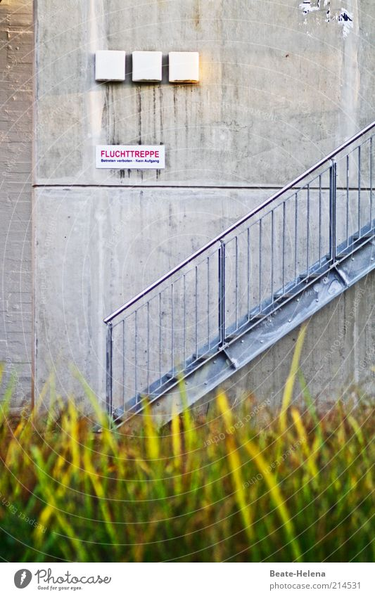 Verbotener Fluchtweg Wand Gras Mauer Gebäude Metall Beton Schilder & Markierungen Fassade Sicherheit Treppe trist Baustelle Schutz Gelassenheit Hinweisschild Bauwerk