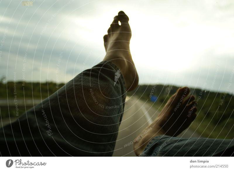 easy rider Mensch Mann Erwachsene Erholung Fuß Horizont Zufriedenheit Glas fliegen Ausflug maskulin frei Luftverkehr verrückt Jeanshose Autobahn