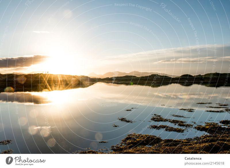 Doppelbeleuchtung Natur Landschaft Wasser Himmel Horizont Sonnenlicht Schönes Wetter Algen Felsen Berge u. Gebirge Küste Bucht Meer Atlantik beobachten glänzend