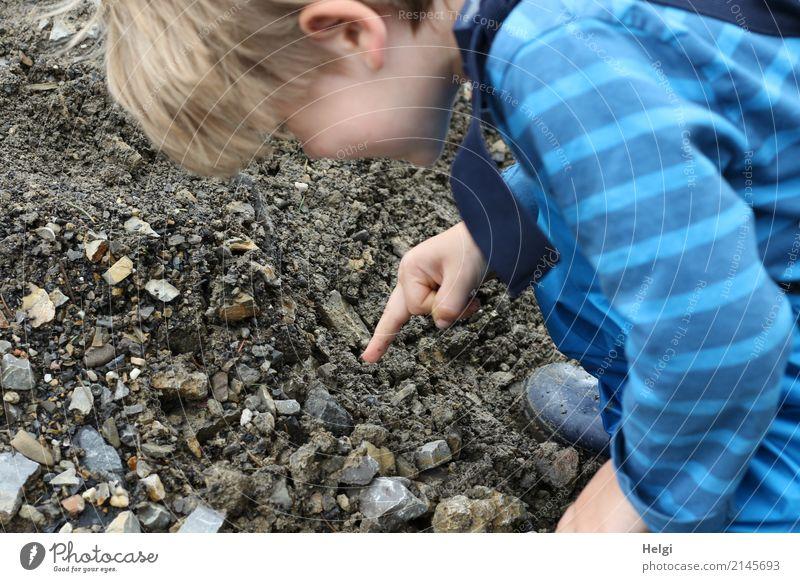 kleiner Junge zeigt auf den Weg, auf dem er etwas entdeckt hat Mensch maskulin Kleinkind Kindheit 1 3-8 Jahre Umwelt Natur Feld T-Shirt Regenhose Gummistiefel