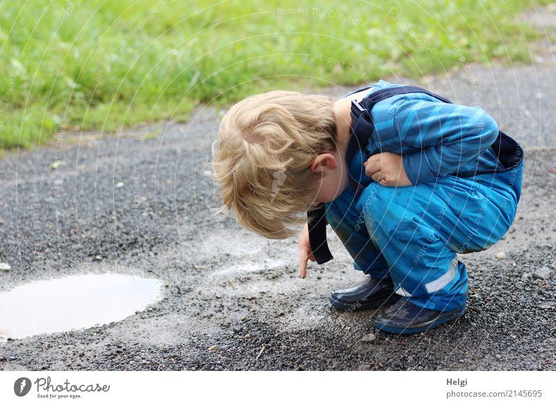kleiner Jungen hockt auf einem regennassen Weg und zeigt auf einen Wurm Mensch maskulin Kleinkind Kindheit 1 3-8 Jahre Umwelt Natur Wasser Sommer