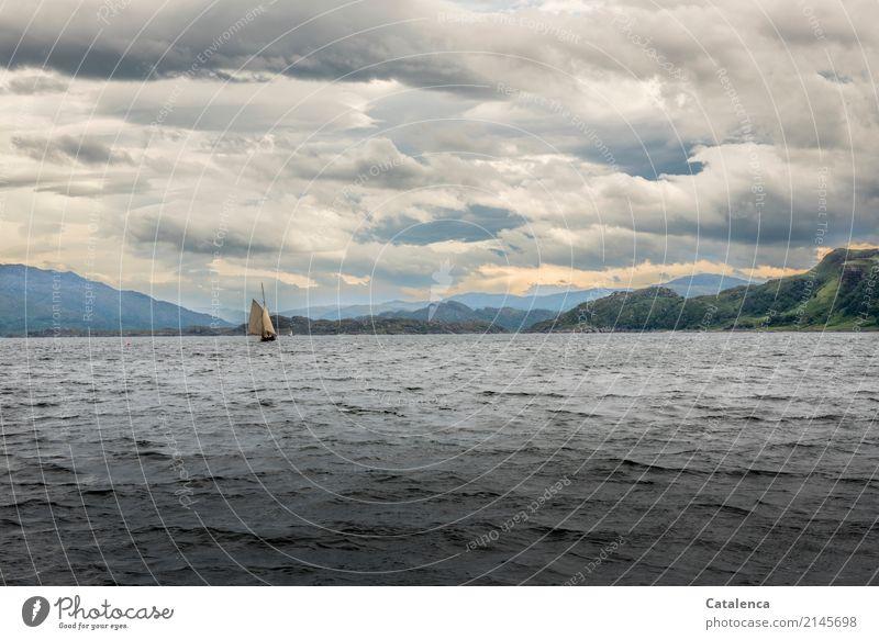 Sound of Mull Segeln Freiheit Sommer Meer Wellen Segeltörn Landschaft Wasser Himmel Wolken Horizont Hügel Felsen Küste Atlantik Schifffahrt Jacht Segelboot