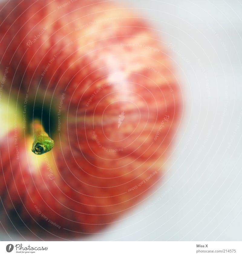 suche Mann mit Stiel rot Ernährung Gesundheit Lebensmittel Frucht süß rein Apfel Stengel lecker Diät Bioprodukte saftig sauer Detailaufnahme Vegetarische Ernährung