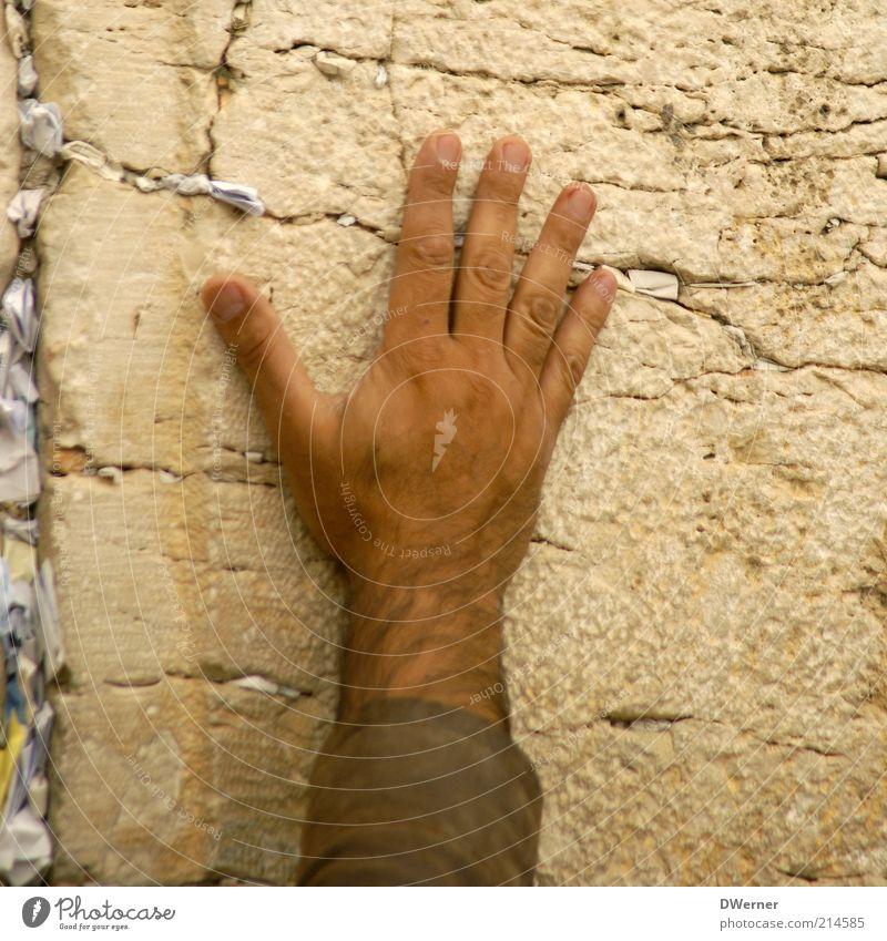 Western Wall Haare & Frisuren Haut Mensch maskulin Mann Erwachsene Hand Kultur Mauer Wand Fassade Sehenswürdigkeit Stein Reinigen ruhig Reue Gebet Zettel Finger