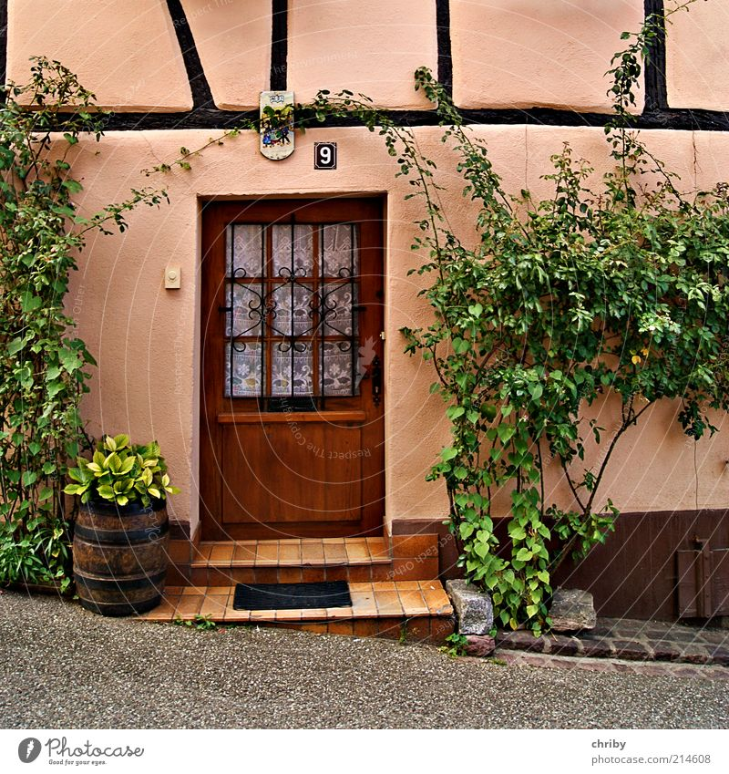 Bitte eintreten! alt grün Haus Wand Mauer Gebäude braun Tür rosa Fassade Design Ordnung Treppe Europa ästhetisch Romantik
