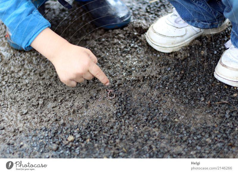 siehst du...? da ... Mensch maskulin feminin Kleinkind Kindheit Hand Finger Fuß 2 3-8 Jahre Schuhe Gummistiefel Tier Wurm Regenwurm 1 Stein beobachten entdecken