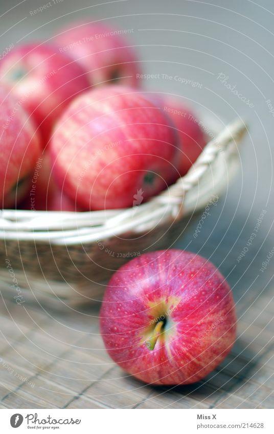 Äpfel Lebensmittel Frucht Apfel Ernährung Bioprodukte Vegetarische Ernährung Diät Schalen & Schüsseln lecker rund saftig sauer süß rot Korb Obstkorb Boskop