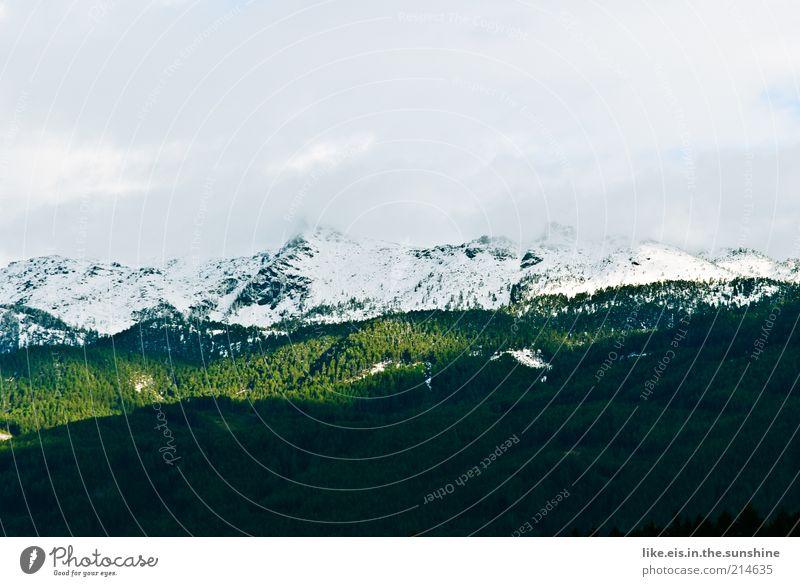 Zucker auf den Bergen II Natur Himmel Winter ruhig Wolken Wald Schnee Herbst Berge u. Gebirge Landschaft Umwelt Klima Alpen Hügel Schönes Wetter