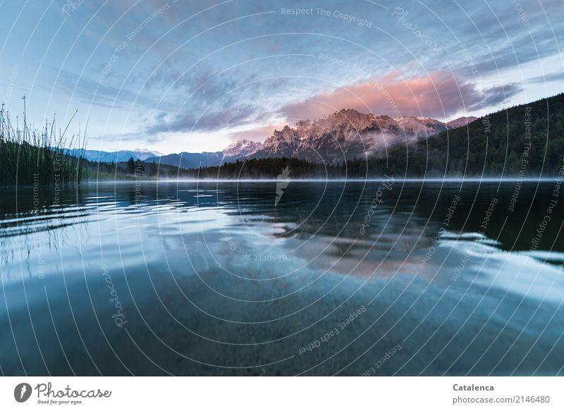 Morgenstund Landschaft Luft Wasser Himmel Wolken Horizont Sommer Schönes Wetter Schliff Binsen Wald Berge u. Gebirge Gipfel Küste Seeufer beobachten leuchten