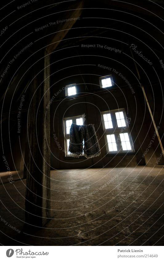 Putztag Wohnung Haus Renovieren Innenarchitektur Raum Dachboden Arbeit & Erwerbstätigkeit leuchten Häusliches Leben dreckig dunkel Ekel gruselig historisch