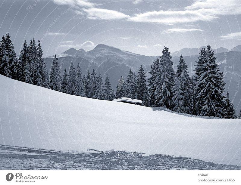 Winterlandschaft Wolken Ferien & Urlaub & Reisen Wald Fichte Berge u. Gebirge Schnee Sonne Himmel Alpen Hütte Spuren