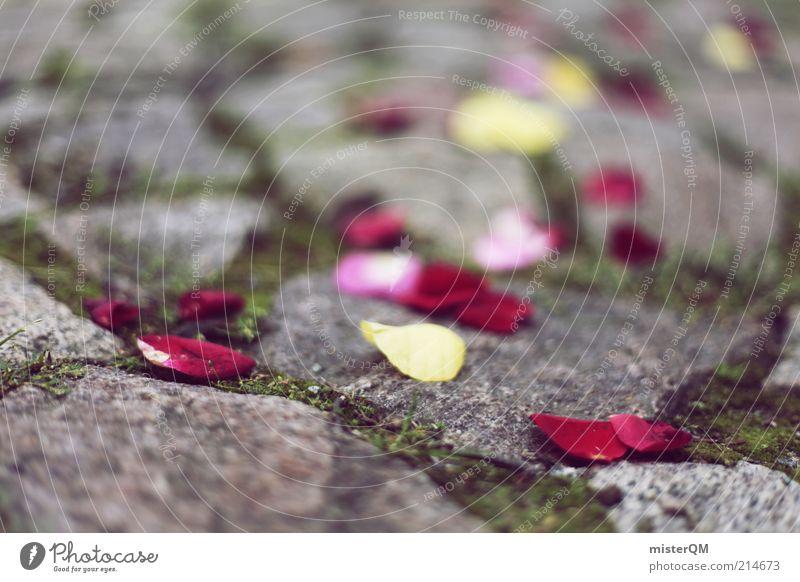 Zeugen des Glücks. Blume Leben Wege & Pfade Freiheit träumen elegant ästhetisch Dekoration & Verzierung Boden Hoffnung Symbole & Metaphern Kitsch Zeichen