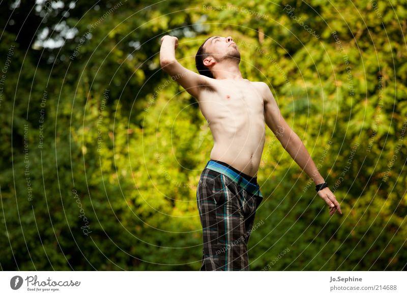 200 & counting Mensch Natur Jugendliche Baum Erwachsene Leben Bewegung springen Junger Mann 18-30 Jahre Kraft maskulin Erfolg Energie Fitness Mut