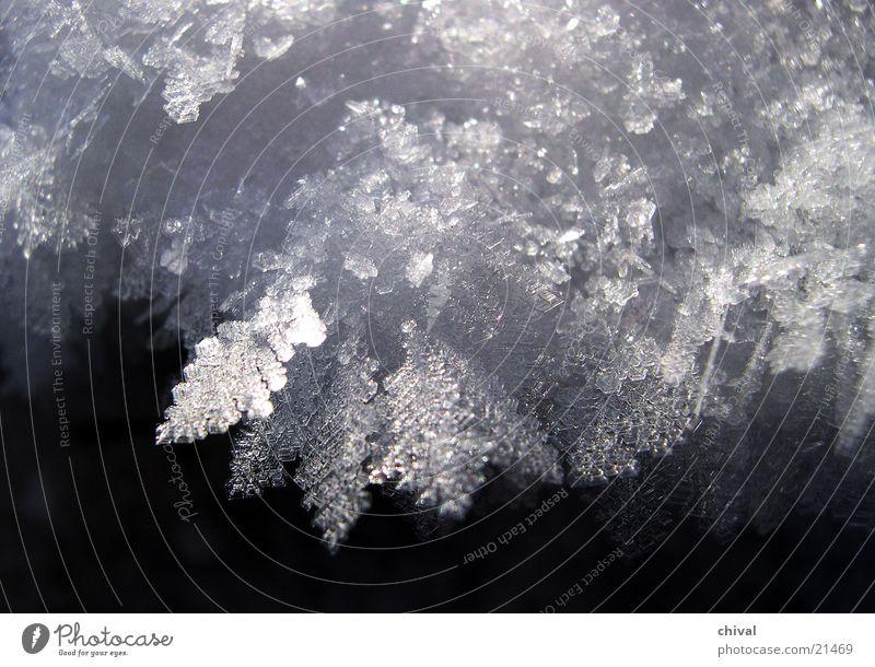 Eiskristalle Sonne Winter kalt Schnee Eis Frost gefroren frieren Kristallstrukturen Raureif