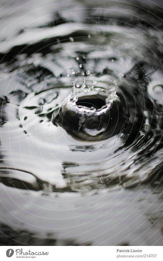 still raining Natur Wasser Gefühle Bewegung träumen Traurigkeit Regen Stimmung Wetter Umwelt nass Wassertropfen Geschwindigkeit Tropfen Klima fallen