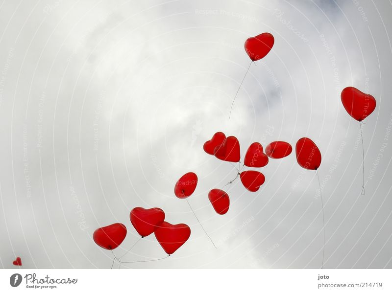wiedermal herzchenzeit Himmel rot Freude Leben Gefühle Liebe Glück Feste & Feiern Luft fliegen Zusammensein Herz Luftballon Romantik Kitsch Zusammenhalt