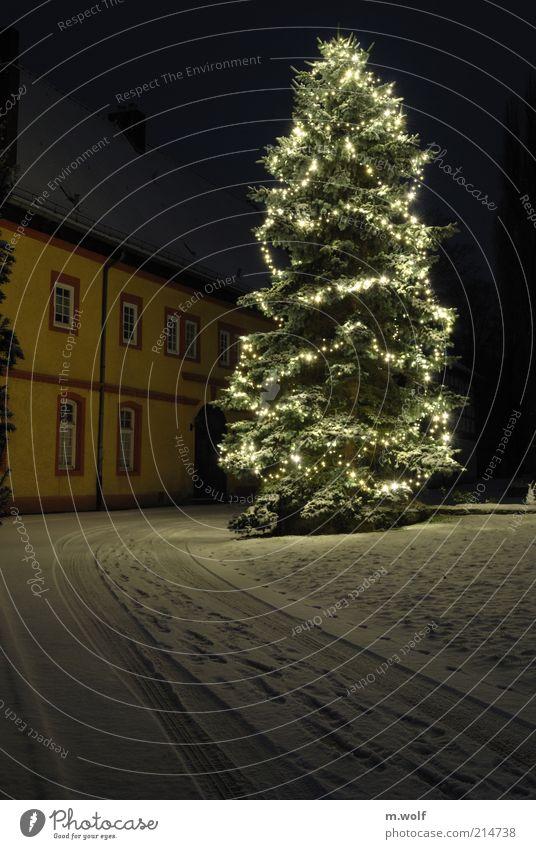little drummer boy Weihnachten & Advent weiß Baum Winter Haus gelb kalt Schnee Wand Gebäude Religion & Glaube Mauer Stimmung Park Feste & Feiern Eis