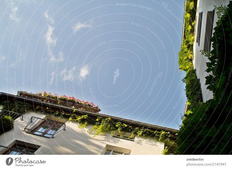 Scheunenviertel Himmel Himmel (Jenseits) Stadt grün Haus Wolken Fenster Wand Mauer Fassade Textfreiraum Häusliches Leben Wetter Stadtzentrum Wohnhaus Altbau