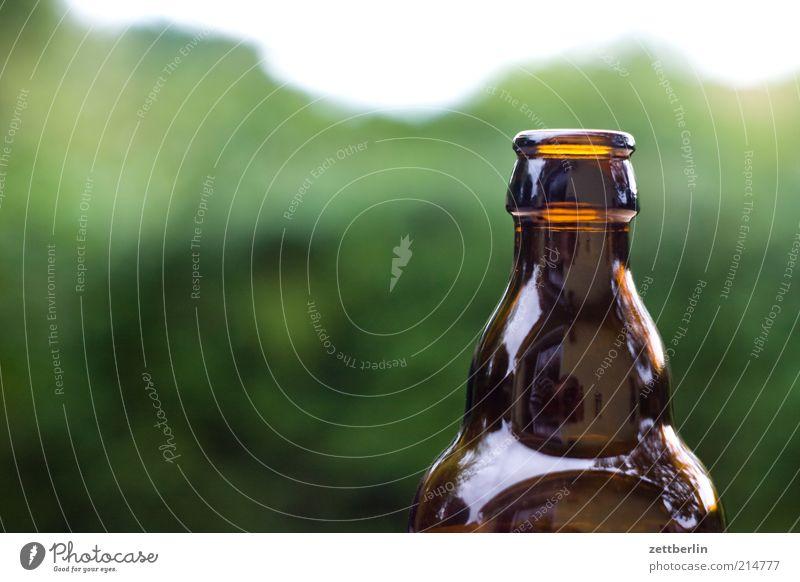 Bier braun glänzend leer Getränk Flasche Alkohol Bierflasche Flaschenhals Glasflasche