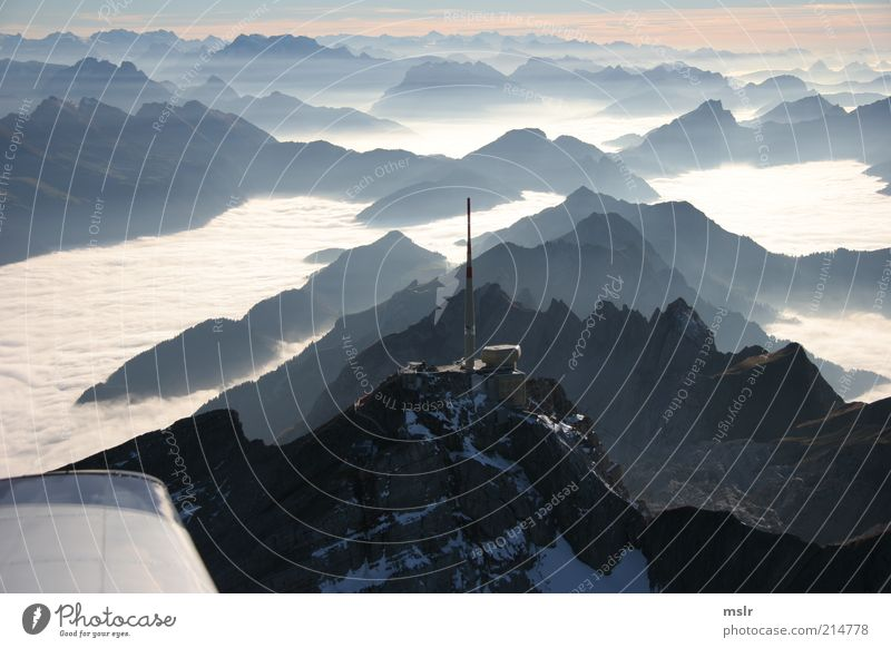 Säntis Gegenlicht Berge u. Gebirge Natur Landschaft Wetter Nebel Alpen Gipfel ästhetisch blau Toggenburg Farbfoto Außenaufnahme Menschenleer Silhouette