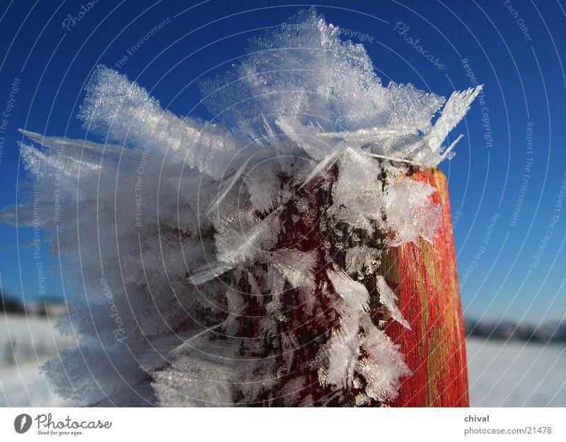 Pfahl mit Rauhreif Himmel weiß blau rot Winter kalt Schnee gefroren Kristallstrukturen Pfosten Raureif