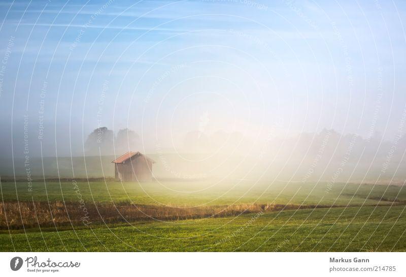 Frühnebel Natur Landschaft Luft Herbst Nebel Baum Gras Morgen Hütte Himmel hell blau grün Bayern Grundbesitz Farbfoto mehrfarbig Außenaufnahme Menschenleer