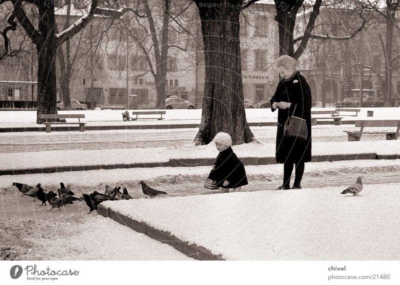 Taubenfütterung Frau Kind Park Taube Stuttgart füttern Futter Schlossplatz