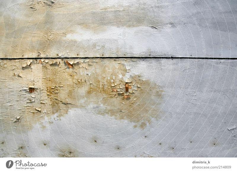 abziehbare Farbe Ruine Holz alt weiß Verfall Schimmelpilze schimmelig Konsistenz Pilz Hintergrundbild Zimmerdecke benetzt Schwüle Wasser Flecken Oberfläche