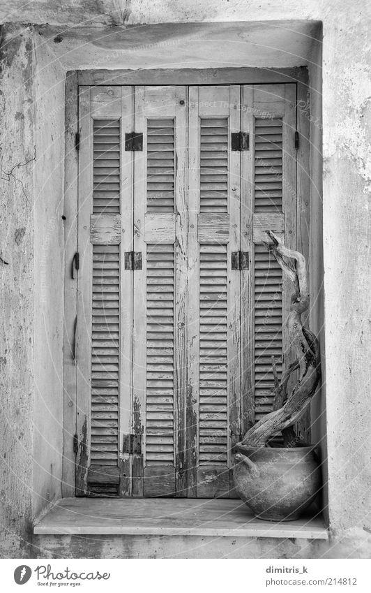 verwittertes Fenster Ferien & Urlaub & Reisen Insel Dekoration & Verzierung Dorf Haus Gebäude Architektur alt Verfall Tafeln Farbe Verlassen Verlassenwerden Ast