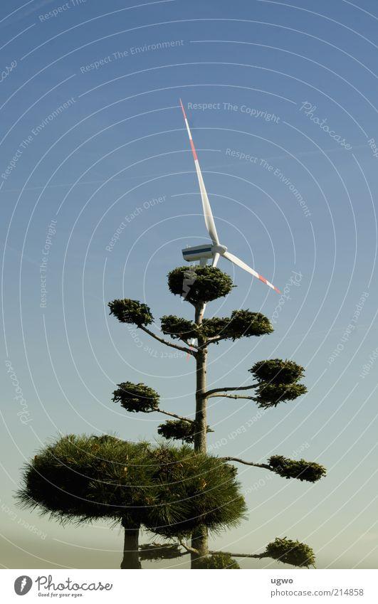 grüner wind Natur Himmel Baum blau ruhig Luft Umwelt hoch Energiewirtschaft Windkraftanlage drehen Schönes Wetter Blauer Himmel Wolkenloser Himmel