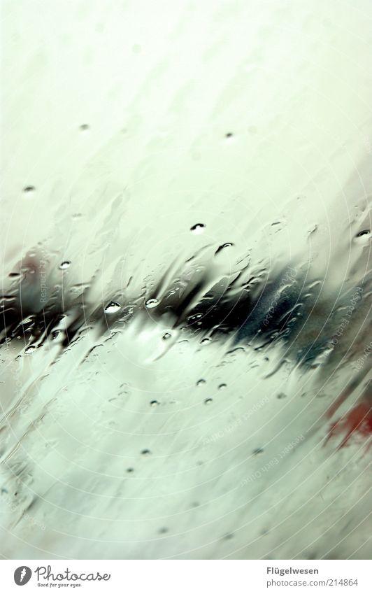 Novemberregen dunkel Herbst Traurigkeit Regen Eis Nebel Wind Wetter Lifestyle Trauer Frost Klima Sturm Gewitter Unwetter Reflexion & Spiegelung