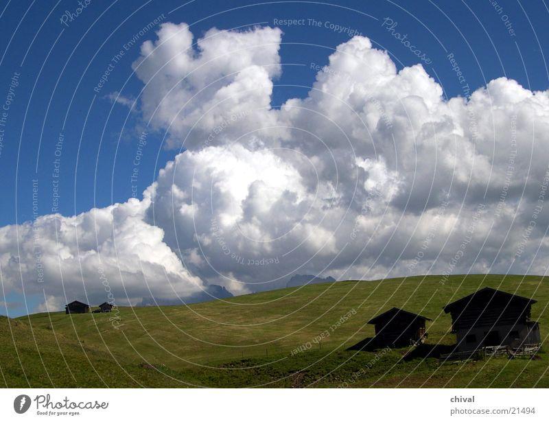 Langkofel Himmel Wolken Wiese Berge u. Gebirge Hütte Gewitter Weide Südtirol Alm Kumulus Plattkofel Seiser Alm