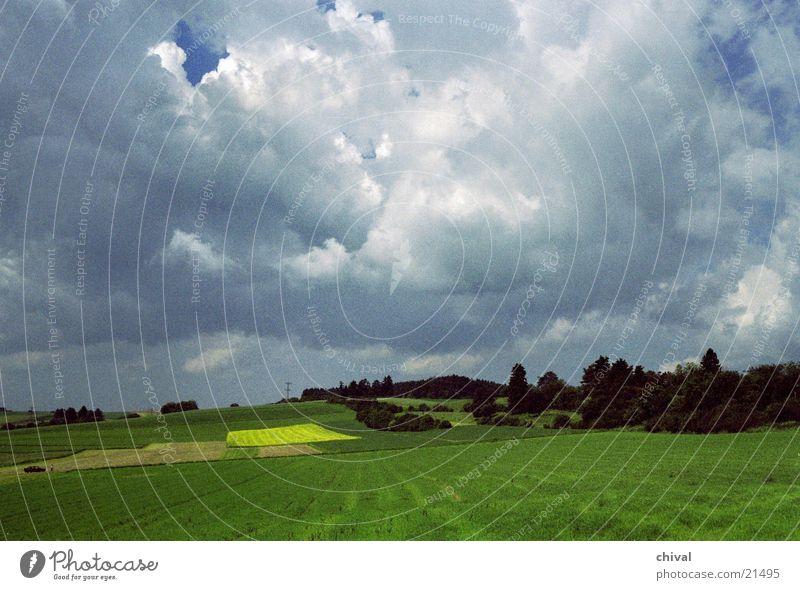 Rapsfeld Himmel grün Wolken gelb Wald Lampe Wiese Berge u. Gebirge Feld