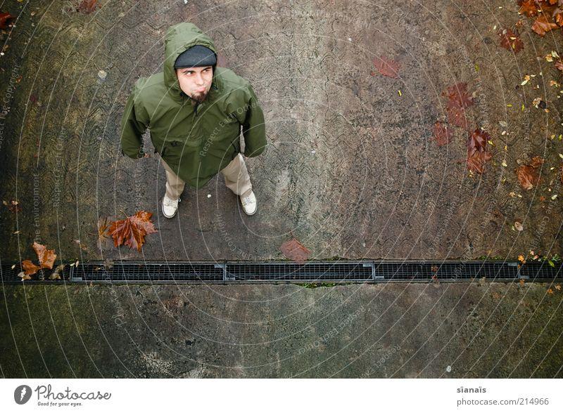 herbstanfang Mensch maskulin Mann Erwachsene Herbst Klimawandel schlechtes Wetter Blatt Schutzbekleidung Jacke Kapuze stehen Gefühle Stimmung Misstrauen Wut