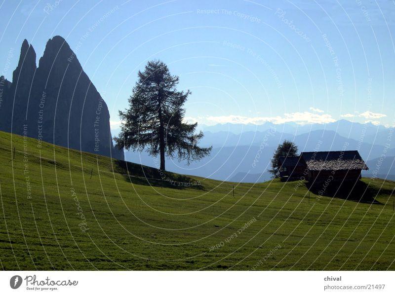 Seiser Alm Dolomiten Baum Panorama (Aussicht) Wiese Ferne Berge u. Gebirge Alpen Hütte Silhouette Nebel Kette groß