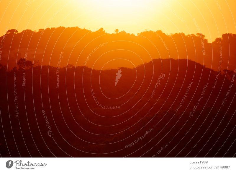 Sonnenuntergang über Mosambik Himmel Natur Ferien & Urlaub & Reisen Sommer Baum Landschaft Ferne Wald Umwelt Farbstoff Tourismus Freiheit Ausflug Horizont