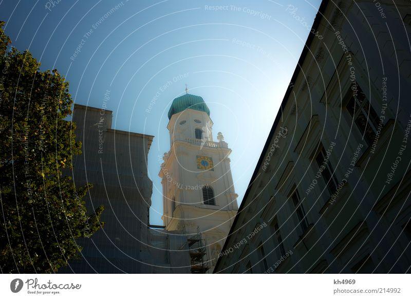 Dom im Licht Ferien & Urlaub & Reisen Tourismus Städtereise Sommer Sonne Kunstwerk Luft Wolkenloser Himmel Sonnenlicht Schönes Wetter Baum Stadt Altstadt