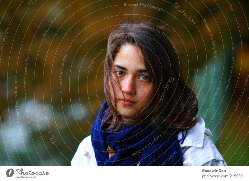 Herbst Mensch feminin Junge Frau Jugendliche Erwachsene 1 Jacke Schal Haare & Frisuren brünett schön kalt Stimmung nachdenklich Traurigkeit frei Farbfoto
