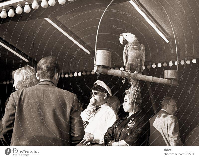 Hereinspaziert! Jahrmarkt Papageienvogel Mikrofon Lautsprecher Animation Publikum Besucher Sensation Mensch Eingang Show Veranstaltung Menschengruppe
