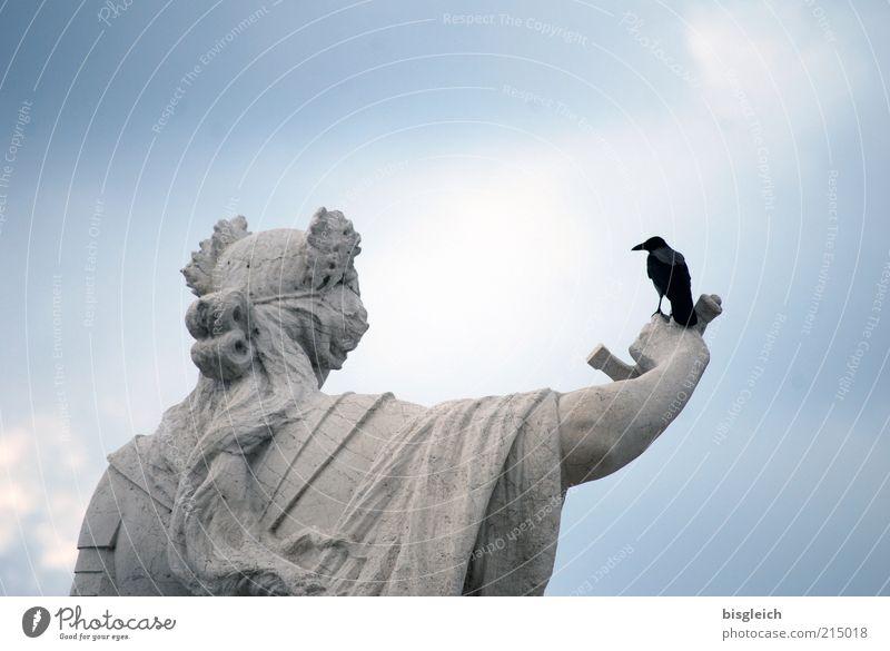 Und nun? weiß blau Tier Kopf Stein Vogel lustig Arme Macht Statue skurril Skulptur Schnabel Waffe Bildausschnitt Schwert
