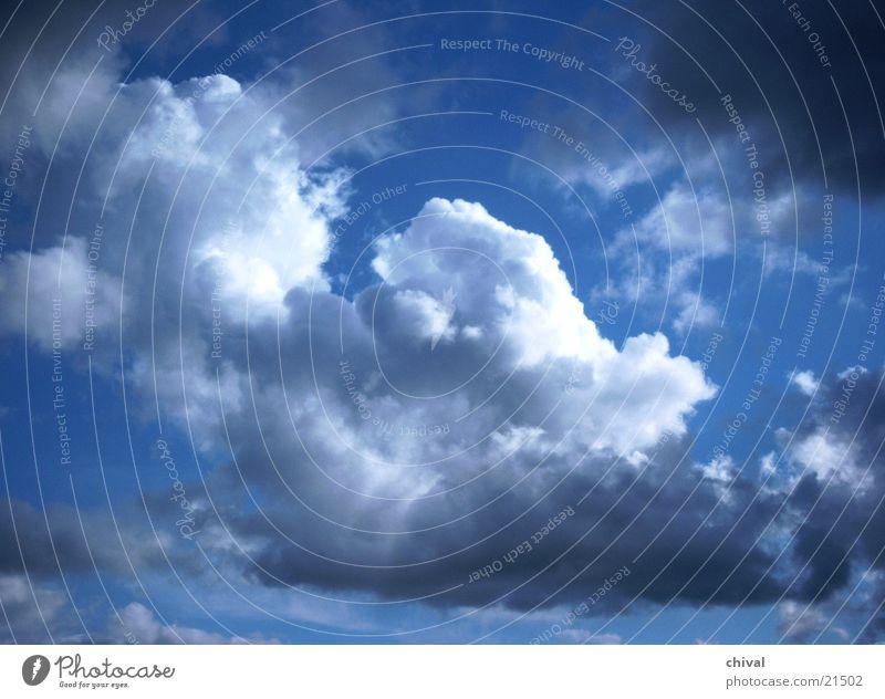 Wolken weiß grau Sommer Himmel blau Kontrast Sonne Gewitter Wetter Klima
