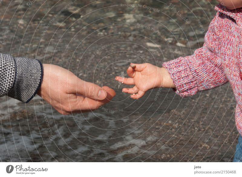 Guck mal! Kind Ferien & Urlaub & Reisen Sommer Junger Mann Freude Strand Herbst Küste Familie & Verwandtschaft Zusammensein Freizeit & Hobby Ausflug Kindheit
