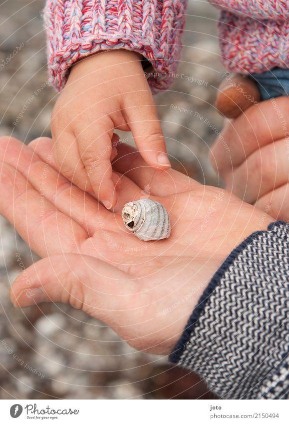 Schnecke gefunden Freude Freizeit & Hobby Ferien & Urlaub & Reisen Ausflug Abenteuer Sommer Sommerurlaub Strand Kindererziehung lernen Kleinkind Junger Mann