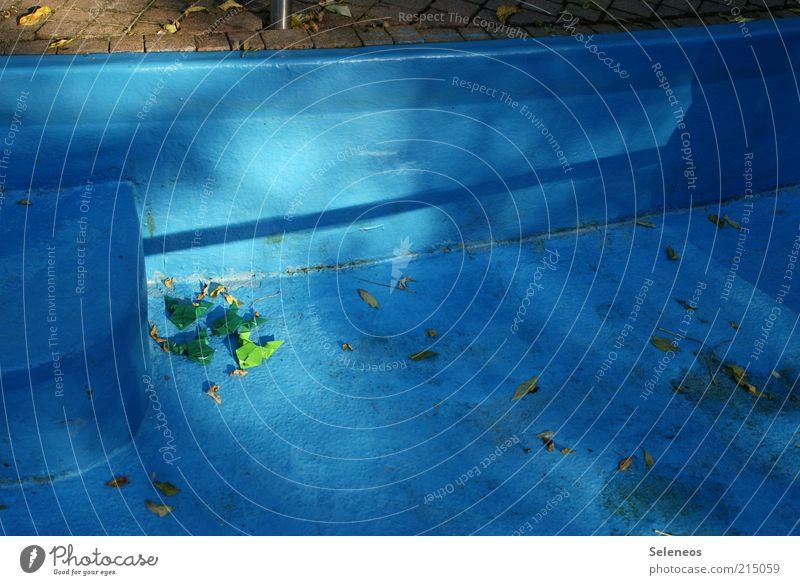 in die Ecke gedrängt blau Blatt Herbst Spielen klein liegen Freizeit & Hobby leer Schwimmbad verstecken Basteln Frosch Origami