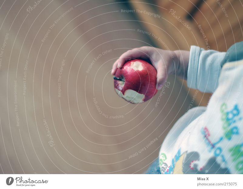 der kleiner Mann lebt gesund Lebensmittel Frucht Apfel Ernährung Essen Bioprodukte Vegetarische Ernährung Mensch Kind Kleinkind Hand 1 1-3 Jahre lecker süß