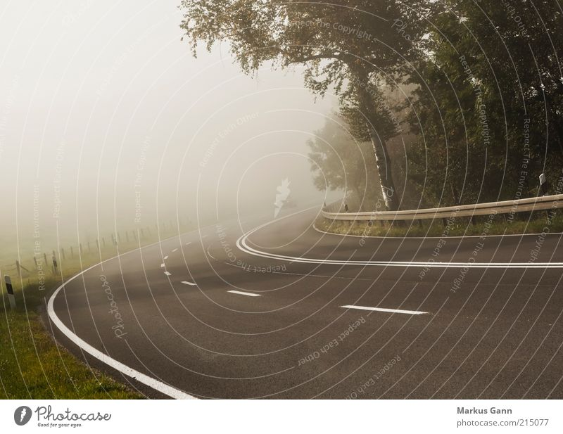 Im Nebel Natur Baum Ferien & Urlaub & Reisen Straße Herbst PKW Luft Linie braun Wetter Umwelt Verkehr geschlossen Perspektive