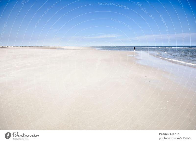 Take a picture Mensch 1 Umwelt Natur Landschaft Sommer Klima Wetter Schönes Wetter Wellen Küste Strand Nordsee Meer Insel Blick Stimmung Freude Glück