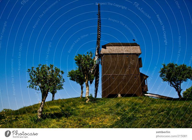 Windmühle in Werder Natur alt Himmel Baum Sommer Park Landschaft Umwelt Ausflug Energiewirtschaft Tourismus Hügel Handwerk historisch Schönes Wetter Museum